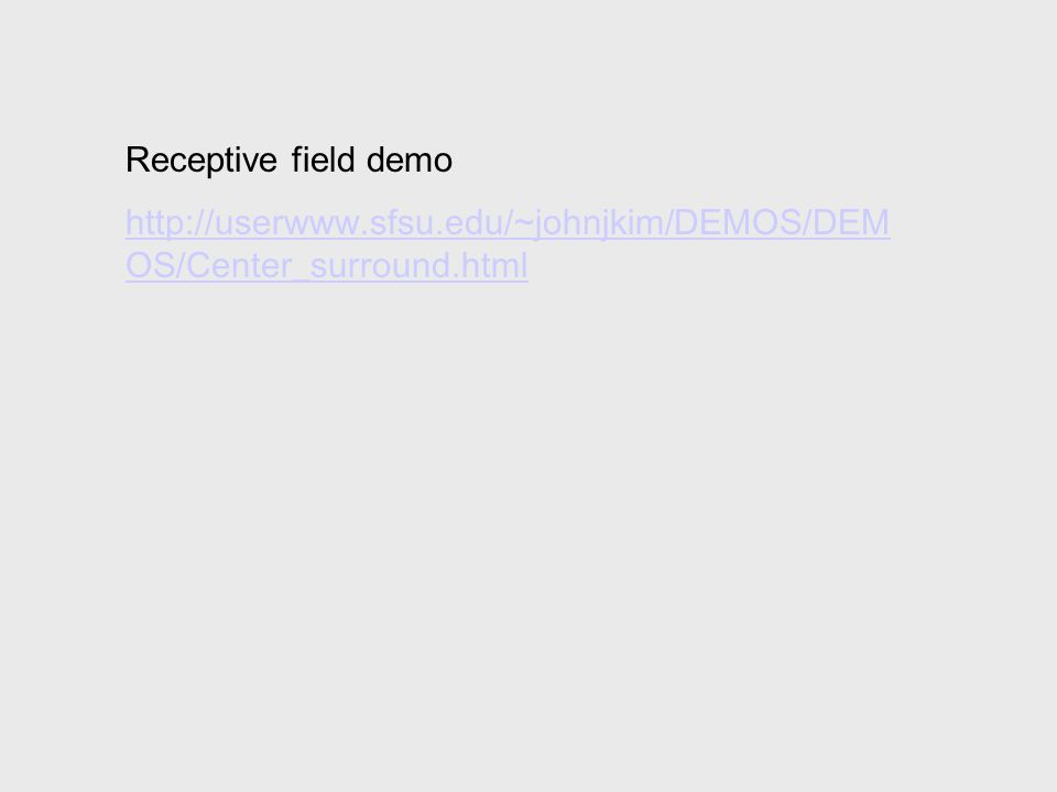 Receptive field demo http://userwww.sfsu.edu/~johnjkim/DEMOS/DEM OS/Center_surround.html