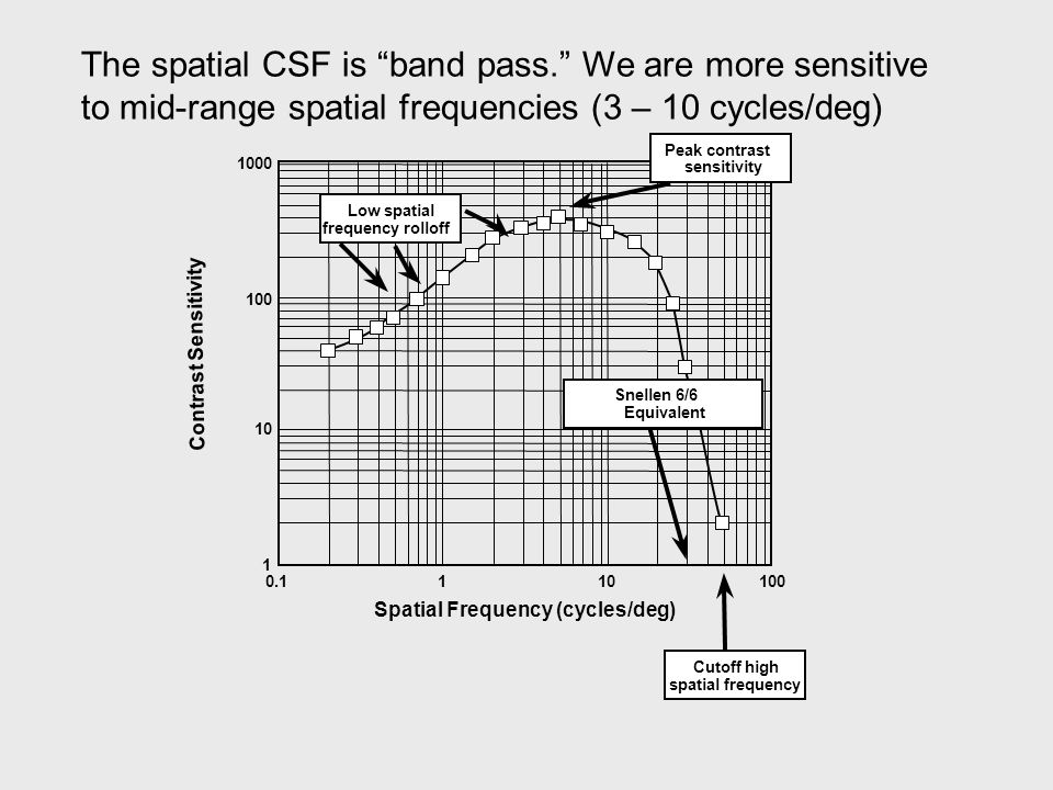 1000 100 10 1 0.1110100 Spatial Frequency (cycles/deg) Contrast Sensitivity Snellen 6/6 Equivalent Low spatial frequency rolloff Cutoff high spatial frequency Peak contrast sensitivity The spatial CSF is band pass. We are more sensitive to mid-range spatial frequencies (3 – 10 cycles/deg)