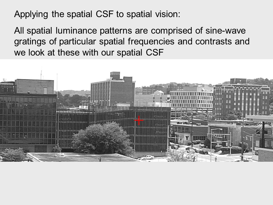 Applying the spatial CSF to spatial vision: All spatial luminance patterns are comprised of sine-wave gratings of particular spatial frequencies and contrasts and we look at these with our spatial CSF