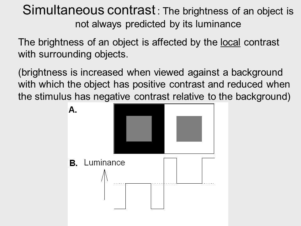 Simultaneous contrast : The brightness of an object is not always predicted by its luminance The brightness of an object is affected by the local contrast with surrounding objects.