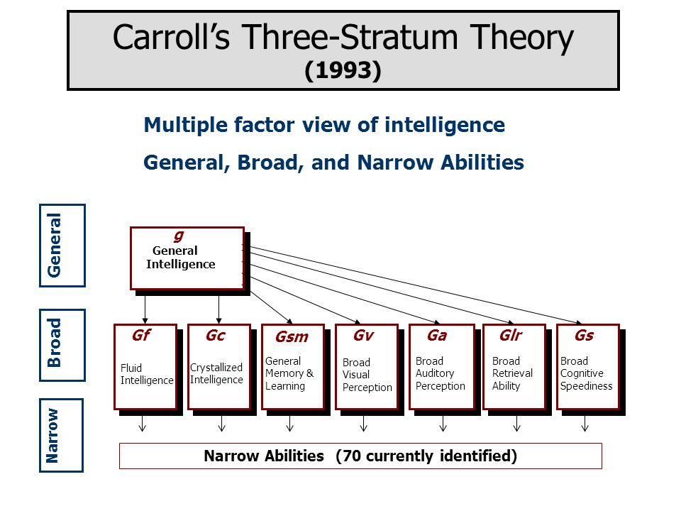 Multiple factor view of intelligence General, Broad, and Narrow Abilities Carroll's Three-Stratum Theory (1993) g General Intelligence Fluid Intelligence Crystallized Intelligence GfGc Broad Auditory Perception Broad Retrieval Ability Broad Cognitive Speediness GaGlrGs General Memory & Learning Broad Visual Perception Gv Gsm Narrow Abilities (70 currently identified) General Broad Narrow