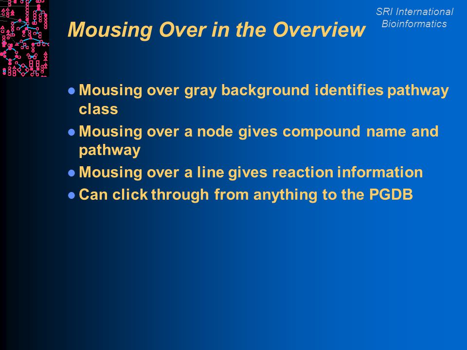 SRI International Bioinformatics Mousing Over in the Overview Mousing over gray background identifies pathway class Mousing over a node gives compound name and pathway Mousing over a line gives reaction information Can click through from anything to the PGDB