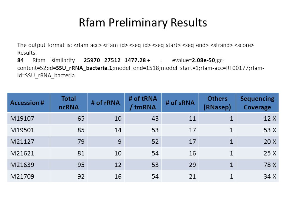 Rfam Preliminary Results Accession # Total ncRNA # of rRNA # of tRNA / tmRNA # of sRNA Others (RNasep) Sequencing Coverage M1910765104311112 X M1950185145317153 X M211277995217120 X M2162181105416125 X M2163995125329178 X M2170992165421134 X The output format is: Results: 84 Rfam similarity 25970 27512 1477.28 +.