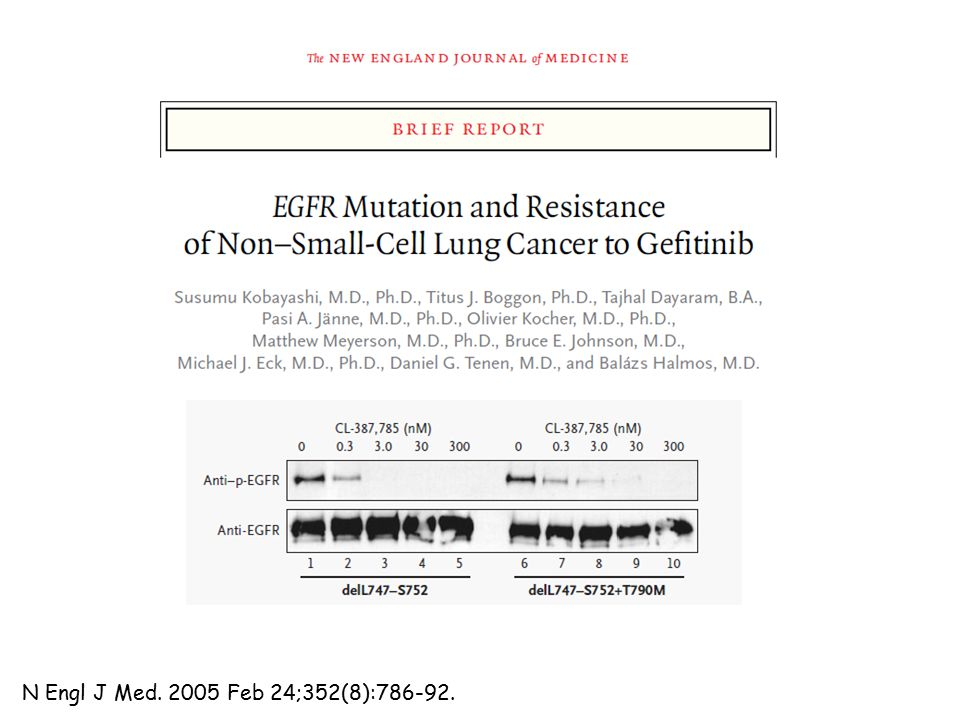 Opportunities and Challenges How to best identify patients with EGFR T790M .