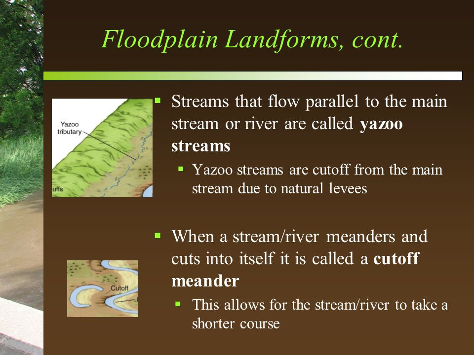 Floodplain Landforms, cont.