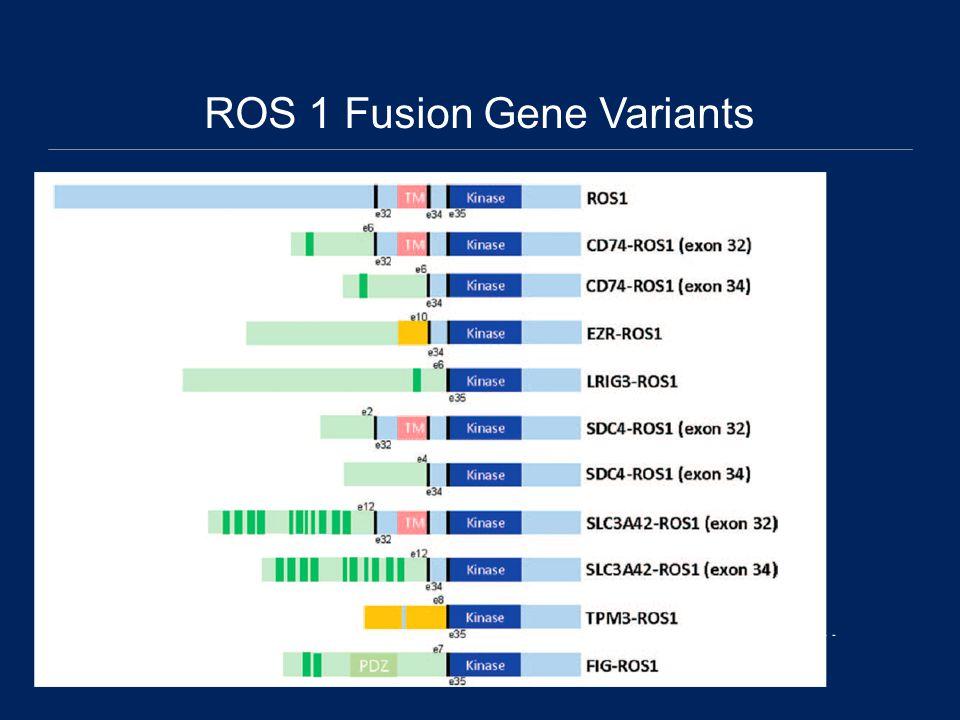 ROS 1 Fusion Gene Variants