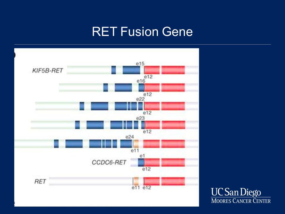 RET Fusion Gene