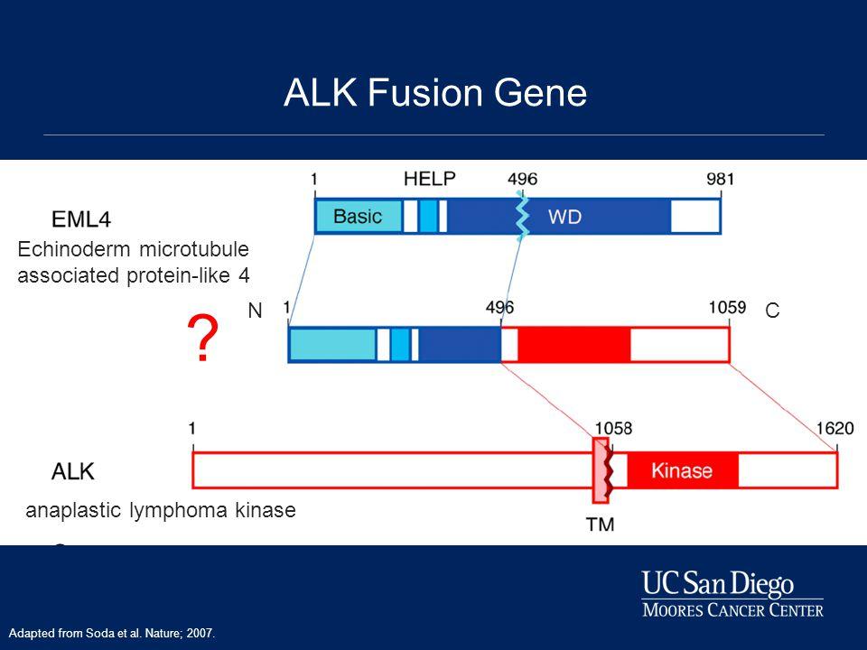 Echinoderm microtubule associated protein-like 4 anaplastic lymphoma kinase .