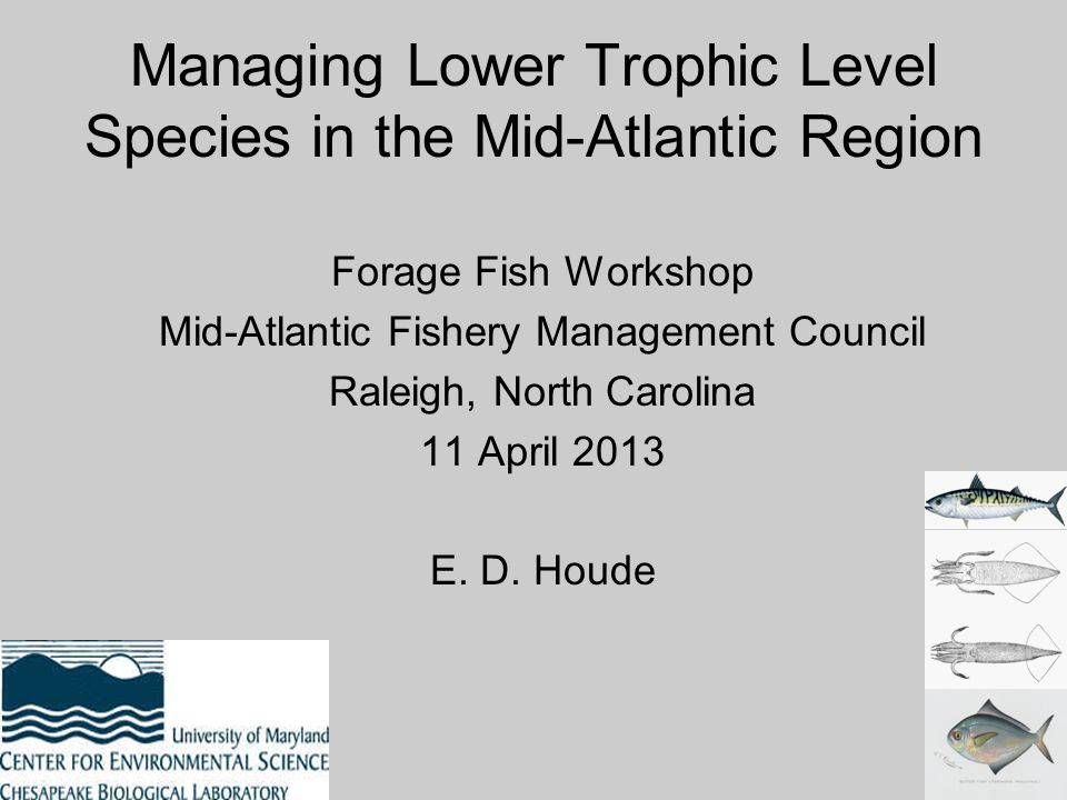Managing Lower Trophic Level Species in the Mid-Atlantic Region Forage Fish Workshop Mid-Atlantic Fishery Management Council Raleigh, North Carolina 1