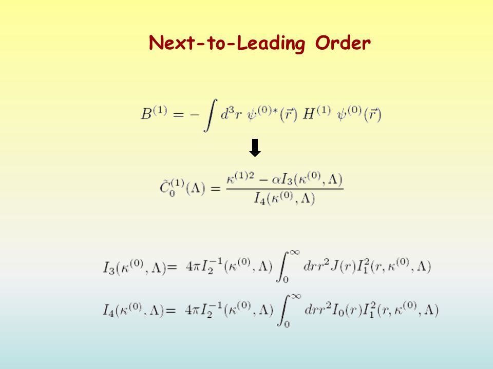 Next-to-Leading Order