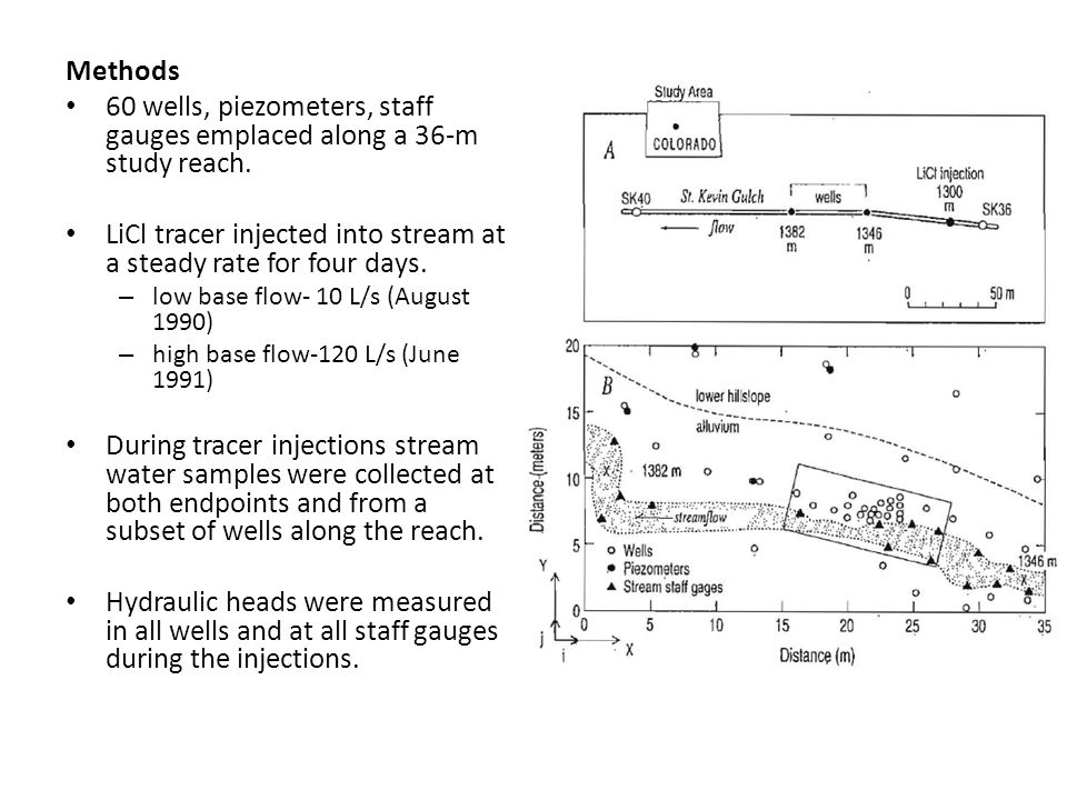 Methods 60 wells, piezometers, staff gauges emplaced along a 36-m study reach.