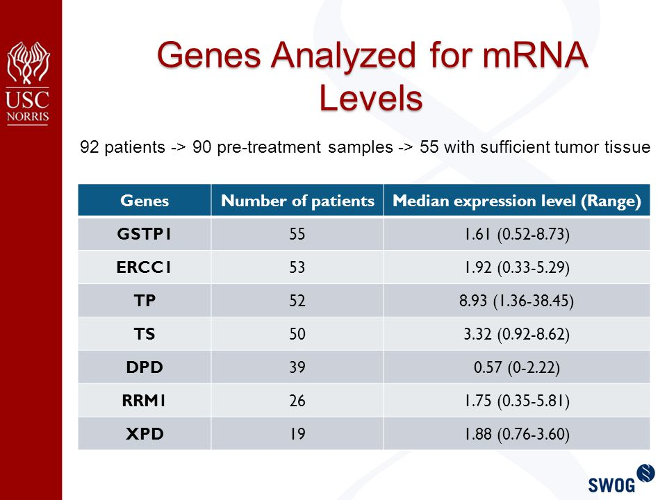 Genes Analyzed for mRNA Levels GenesNumber of patientsMedian expression level (Range) GSTP1551.61 (0.52-8.73) ERCC1531.92 (0.33-5.29) TP528.93 (1.36-38.45) TS503.32 (0.92-8.62) DPD390.57 (0-2.22) RRM1261.75 (0.35-5.81) XPD191.88 (0.76-3.60) 92 patients -> 90 pre-treatment samples -> 55 with sufficient tumor tissue
