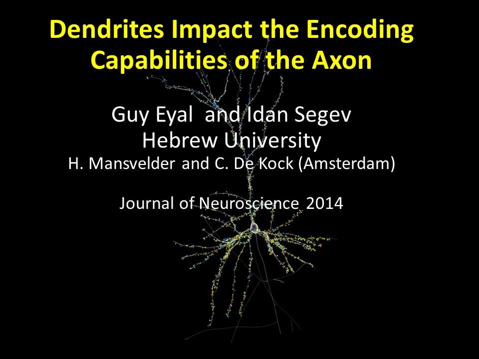 Dendrites Impact the Encoding Capabilities of the Axon Guy Eyal and Idan Segev Hebrew University H. Mansvelder and C. De Kock (Amsterdam) Journal of N