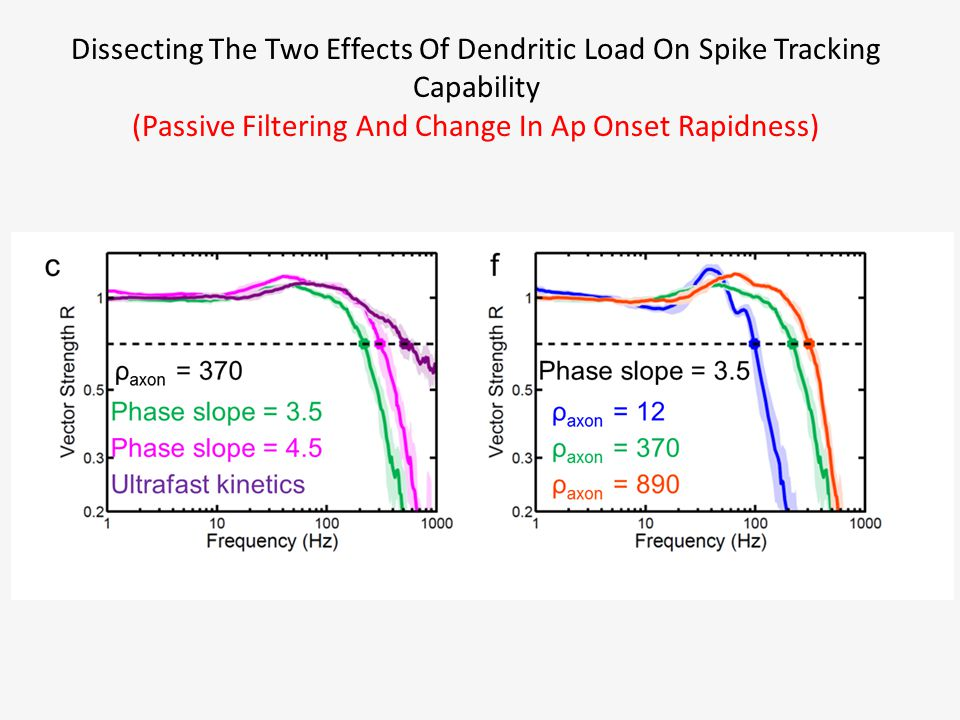 Dissecting The Two Effects Of Dendritic Load On Spike Tracking Capability (Passive Filtering And Change In Ap Onset Rapidness)