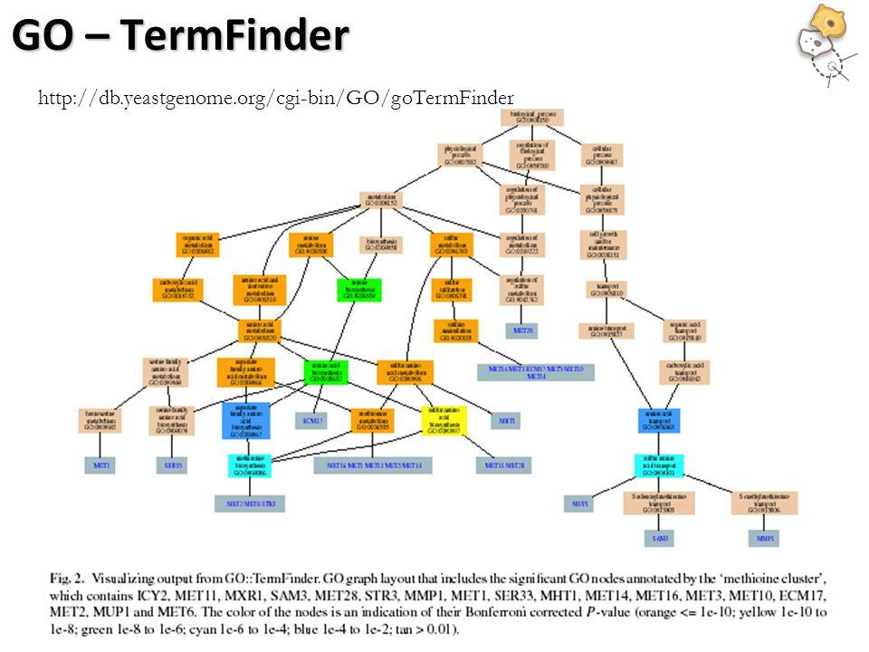 http://db.yeastgenome.org/cgi-bin/GO/goTermFinder