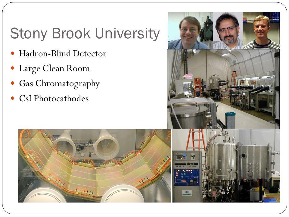 Stony Brook University Hadron-Blind Detector Large Clean Room Gas Chromatography CsI Photocathodes