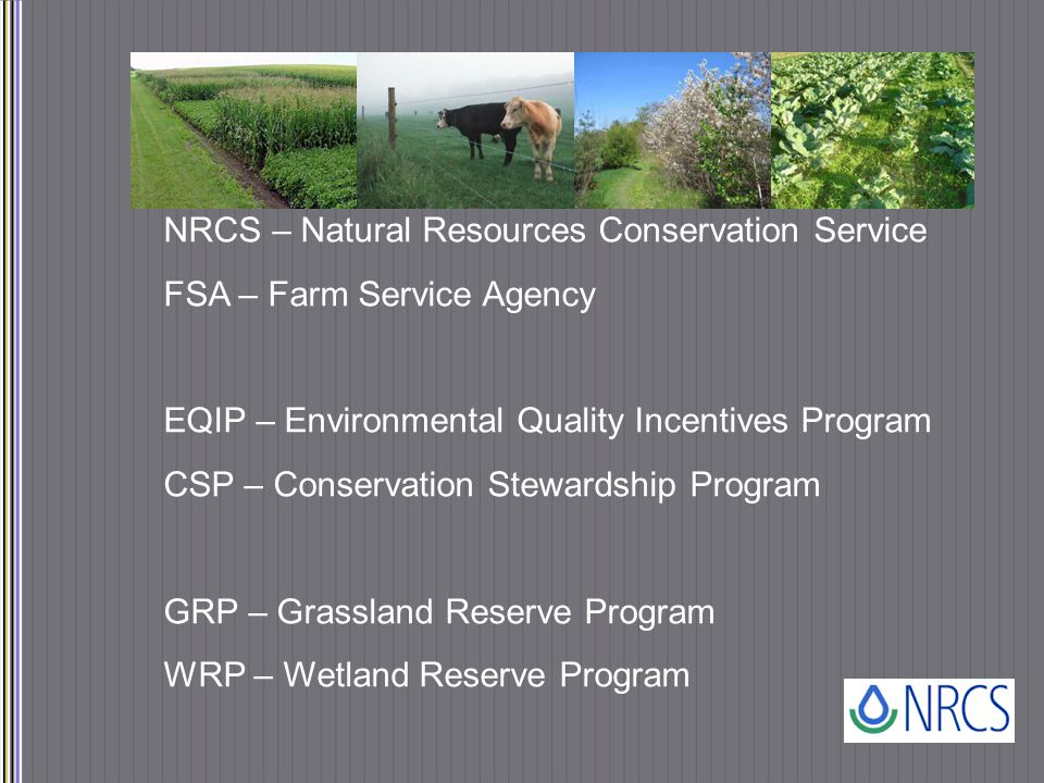 NRCS – Natural Resources Conservation Service FSA – Farm Service Agency EQIP – Environmental Quality Incentives Program CSP – Conservation Stewardship Program GRP – Grassland Reserve Program WRP – Wetland Reserve Program