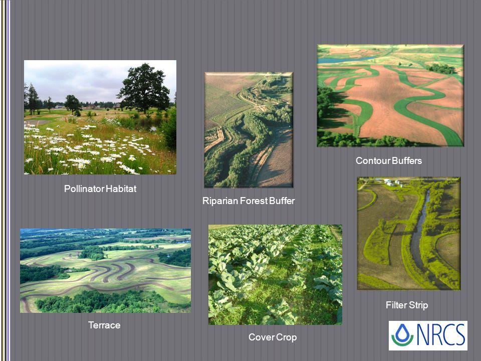 Pollinator Habitat Riparian Forest Buffer Contour Buffers Terrace Cover Crop Filter Strip