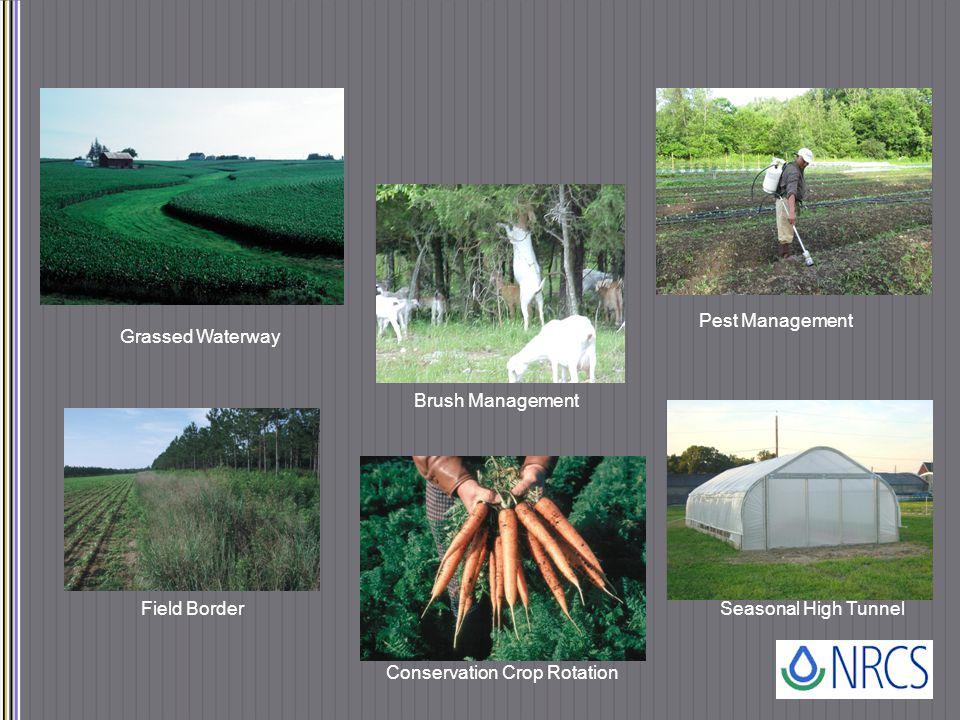 Grassed Waterway Brush Management Pest Management Field Border Conservation Crop Rotation Seasonal High Tunnel