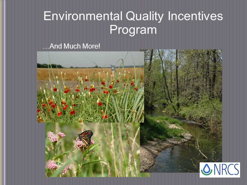 Environmental Quality Incentives Program …And Much More!