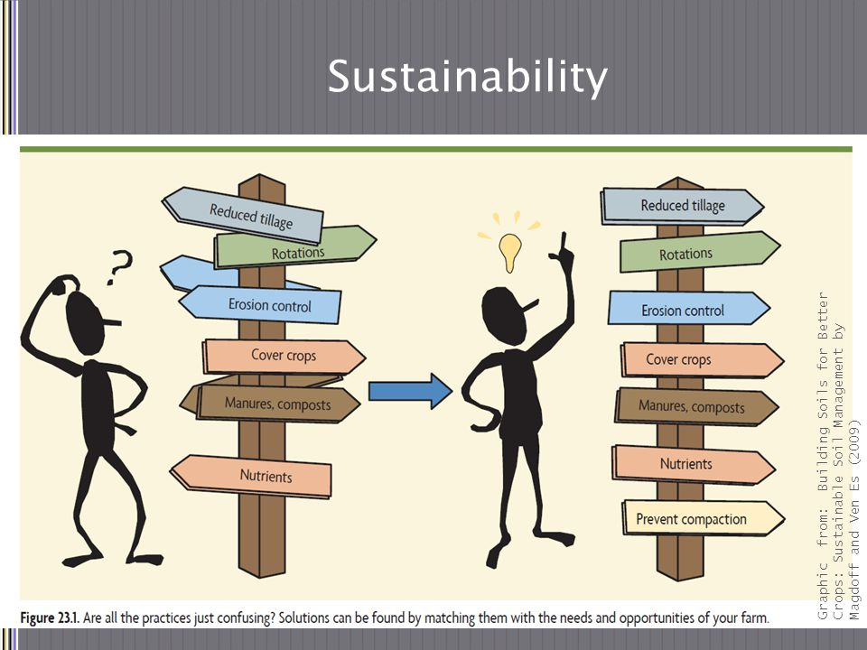 Graphic from: Building Soils for Better Crops: Sustainable Soil Management by Magdoff and Ven Es (2009) Sustainability