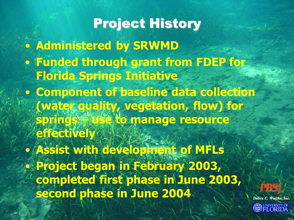 Debra C. Woithe, Inc. Project History Administered by SRWMD Funded through grant from FDEP for Florida Springs Initiative Component of baseline data c