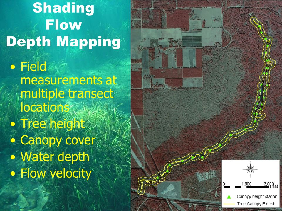 Shading Flow Depth Mapping Field measurements at multiple transect locations Tree height Canopy cover Water depth Flow velocity