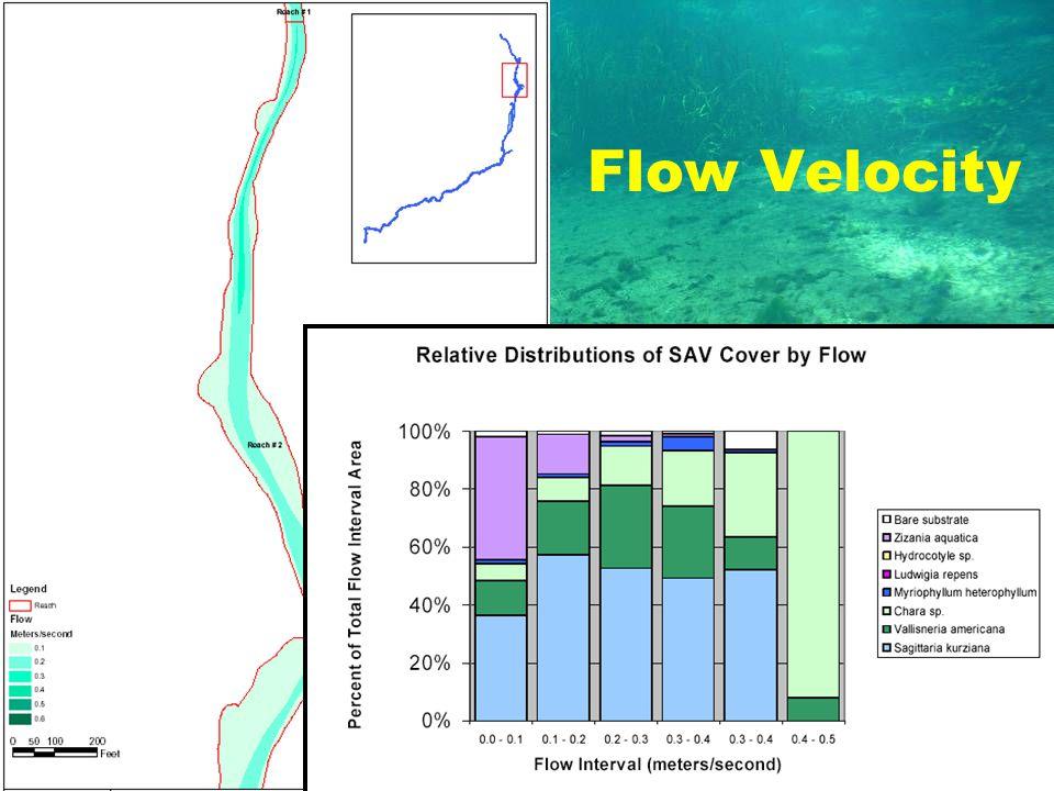 Debra C. Woithe, Inc. Flow Velocity