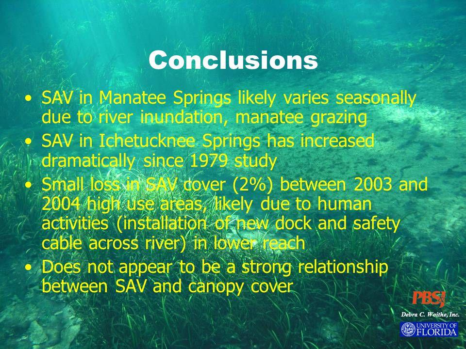 Debra C. Woithe, Inc. Conclusions SAV in Manatee Springs likely varies seasonally due to river inundation, manatee grazing SAV in Ichetucknee Springs