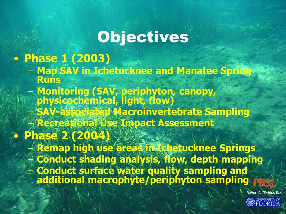 Debra C. Woithe, Inc. Objectives Phase 1 (2003) –Map SAV in Ichetucknee and Manatee Spring Runs –Monitoring (SAV, periphyton, canopy, physicochemical,