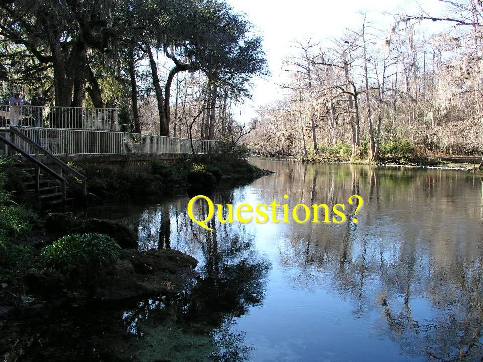 Debra C. Woithe, Inc. Questions?