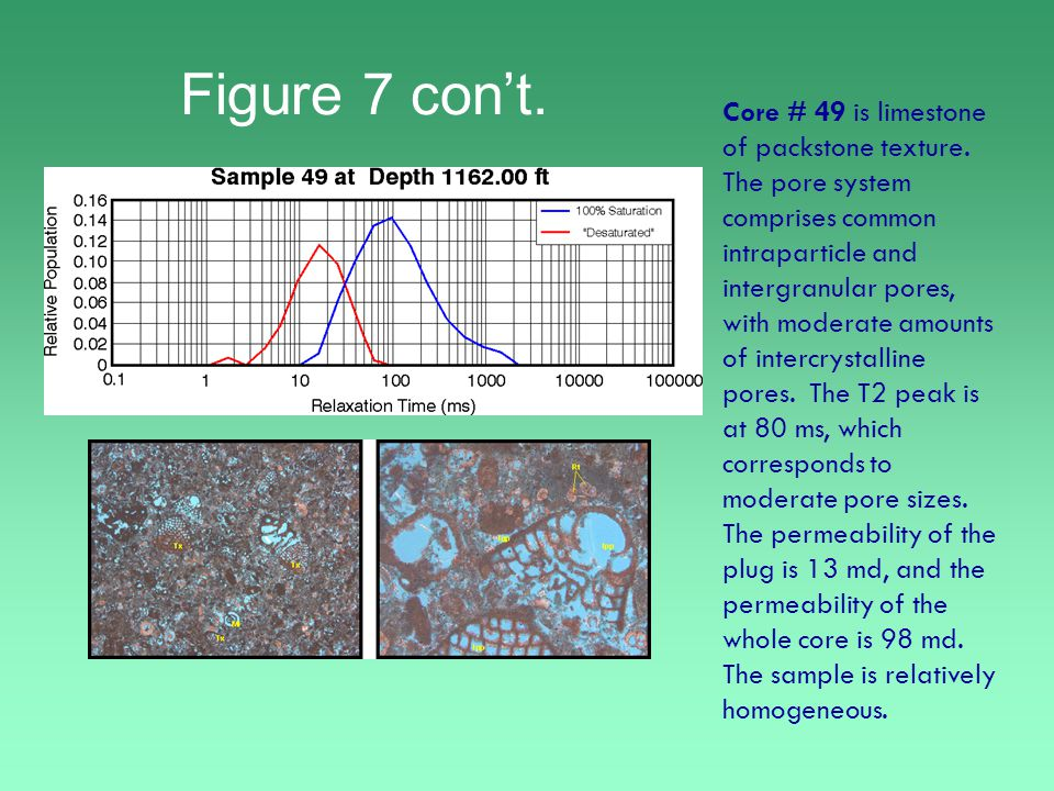 Figure 7 con't. Core # 49 is limestone of packstone texture.