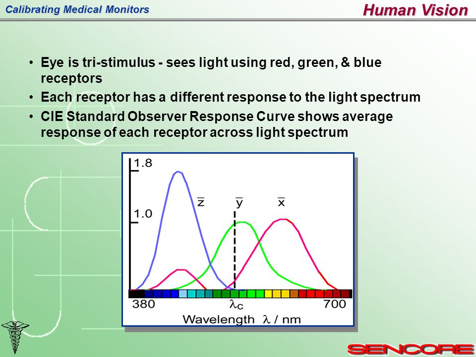 Calibrating Medical Monitors Eye is tri-stimulus - sees light using red, green, & blue receptors Each receptor has a different response to the light spectrum CIE Standard Observer Response Curve shows average response of each receptor across light spectrum Human Vision