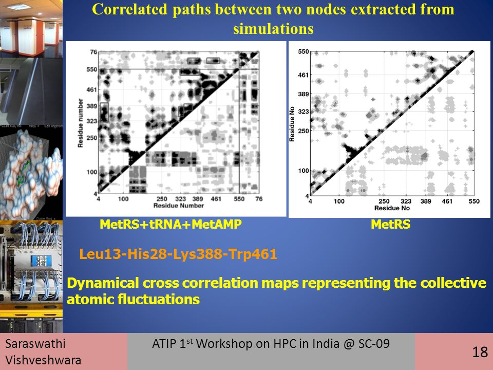 Dynamical cross correlation maps representing the collective atomic fluctuations MetRS+tRNA+MetAMPMetRS Leu13-His28-Lys388-Trp461 Correlated paths between two nodes extracted from simulations Saraswathi Vishveshwara ATIP 1 st Workshop on HPC in India @ SC-09 18