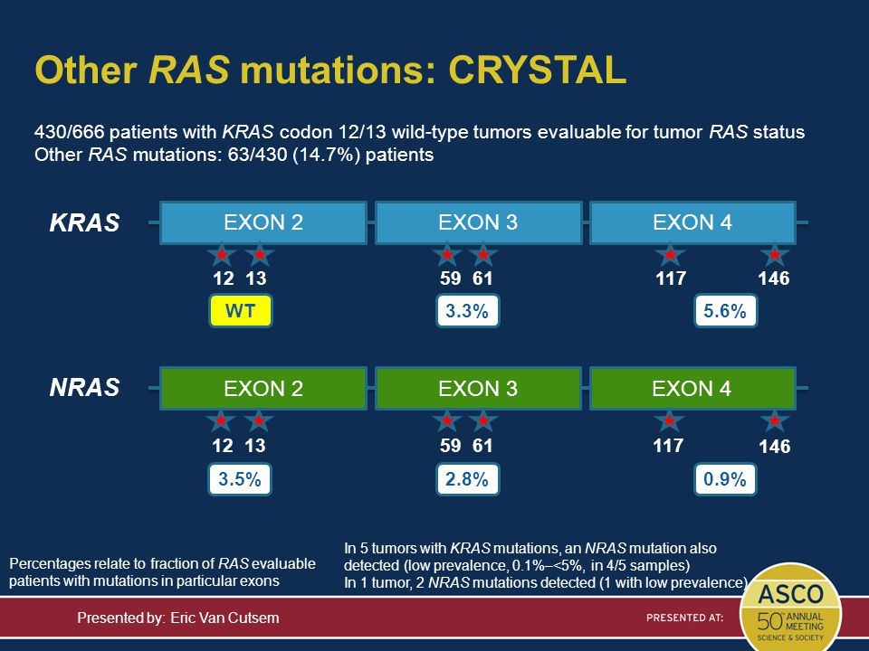 Other RAS mutations: CRYSTAL Presented by: Eric Van Cutsem KRAS NRAS 3.3%5.6% EXON 3EXON 4EXON 2 11759 61 2.8%0.9% EXON 2EXON 3EXON 4 12 1311759 61 12
