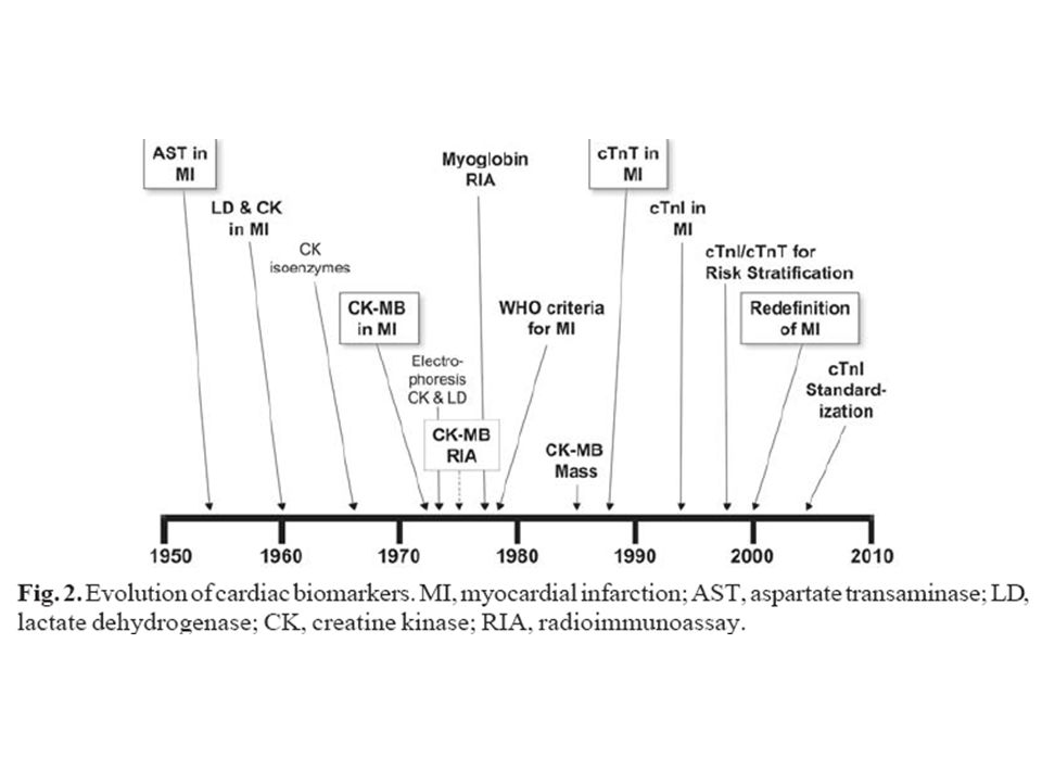 cTnT and cTnI Not early biomarkers of necrosis ↑ diagnostic sensitivity and specificity at pt presentation, 6–9 h later & at 12–24 h if clinical suspicion is ↑ and earlier results are negative ↑ in conc is prolonged release varies among individuals and is unpredictable ↓ useful in reocclusion or for infarct sizing Tool for risk stratification detection of MI up to 2 wk; high specificity for cardiac tissue