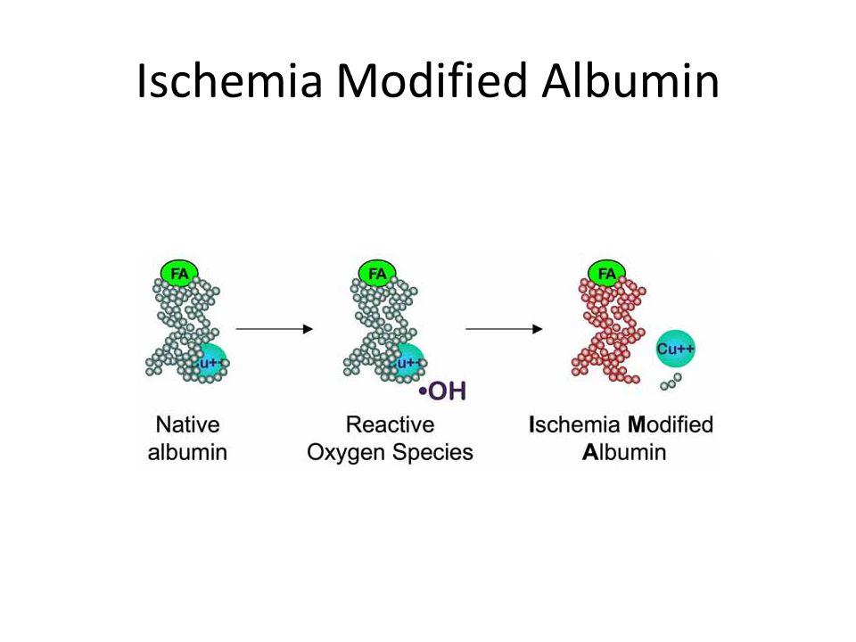 Ischemia Modified Albumin