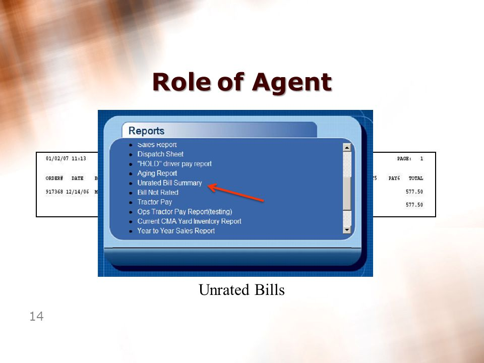 13 Role of Agent Scan Documents Correctly