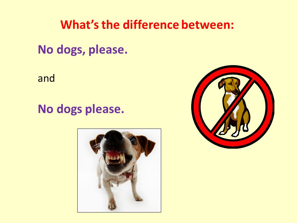 What's the difference between: No dogs, please. and No dogs please.