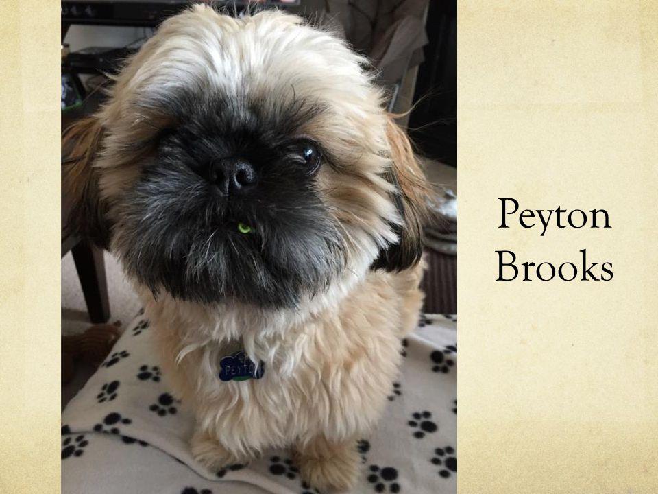 Peyton Brooks