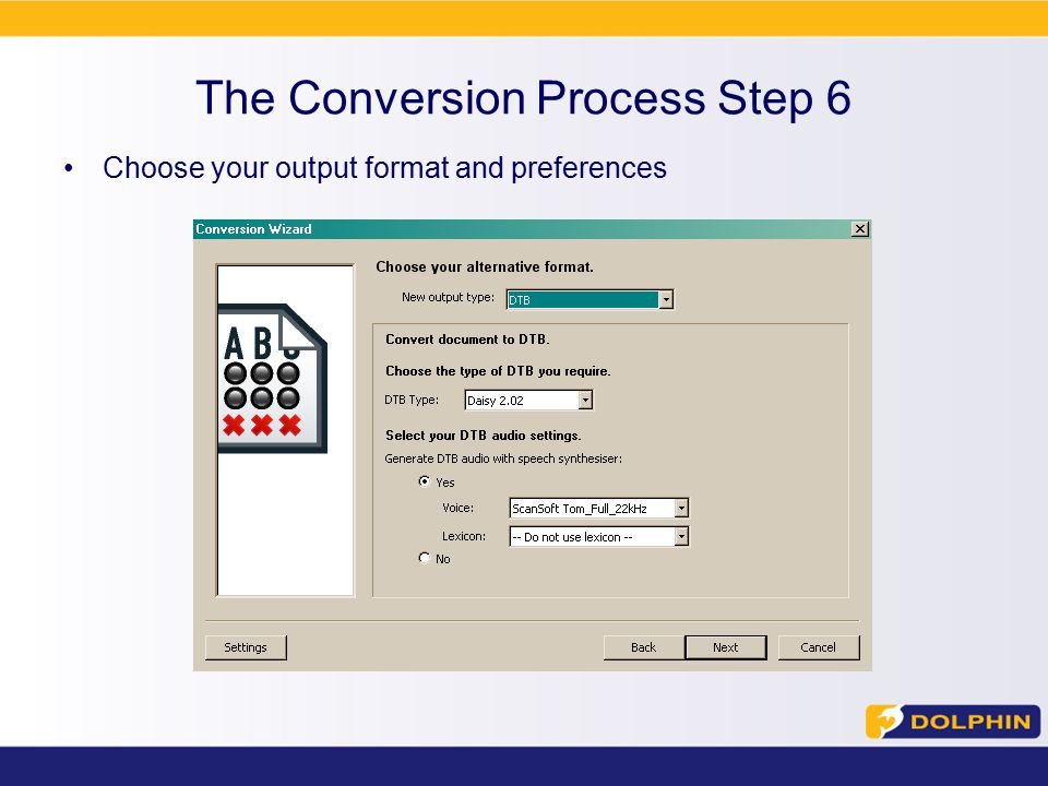 The Conversion Process Step 6 Choose your output format and preferences