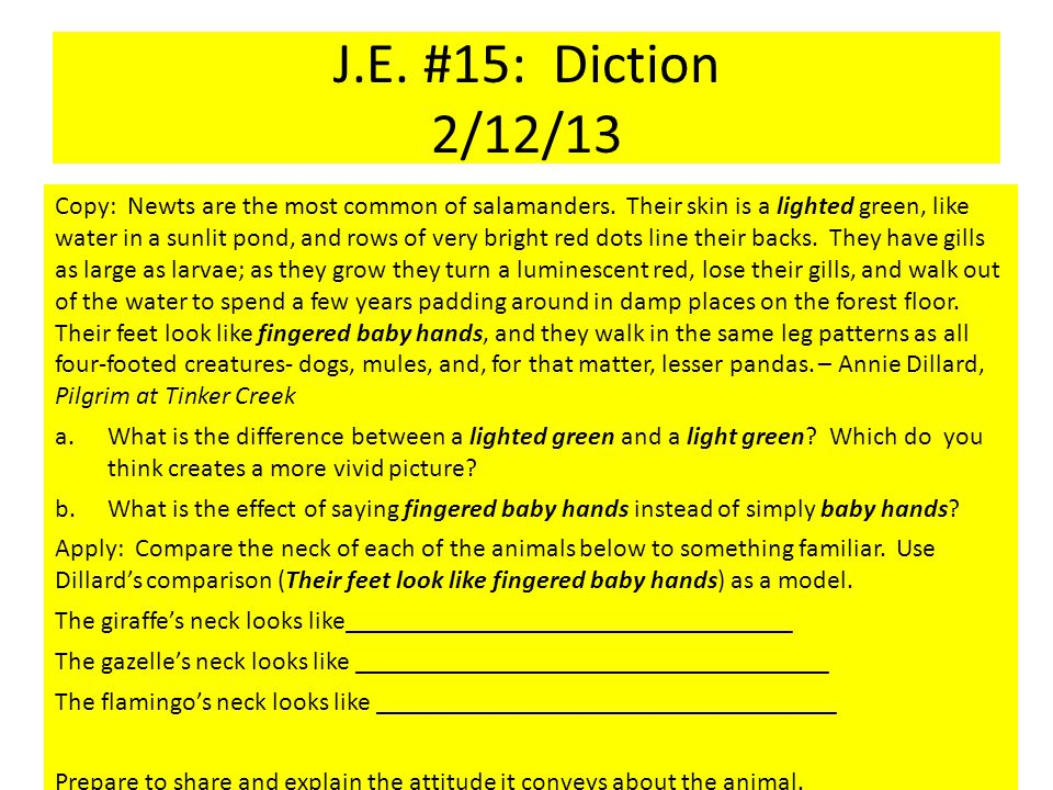 J.E. #15: Diction 2/12/13 Copy: Newts are the most common of salamanders.