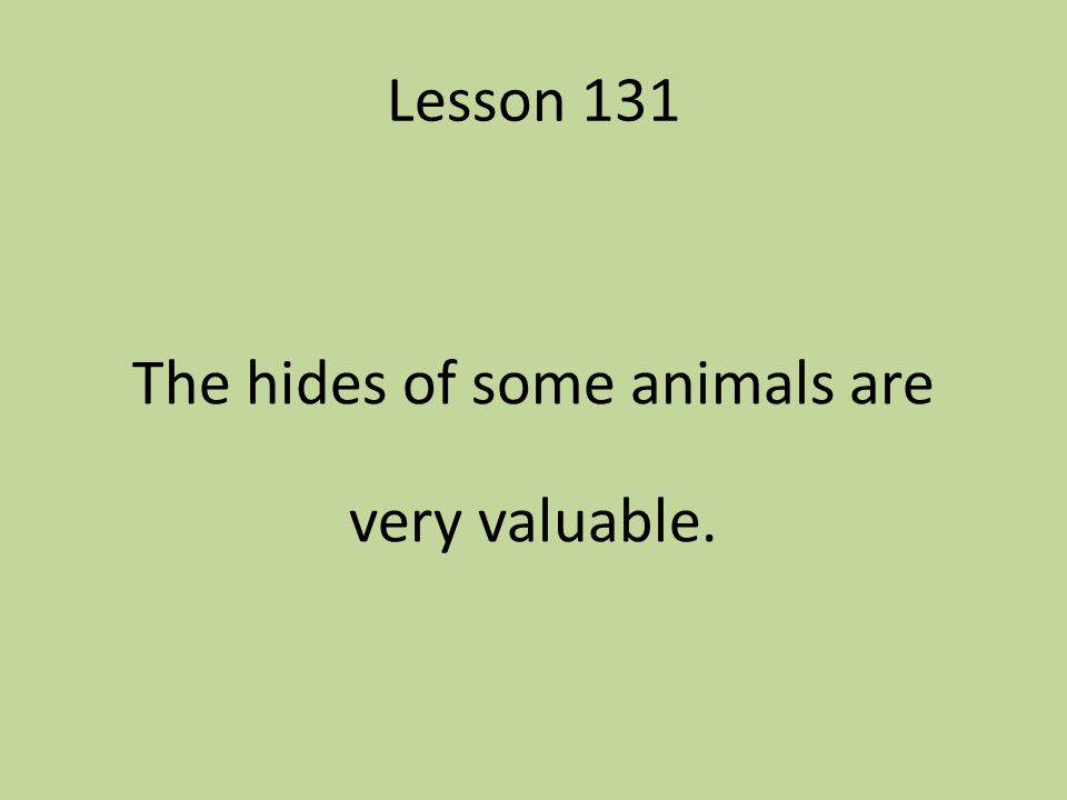 Lesson 131 The hides of some animals are very valuable.