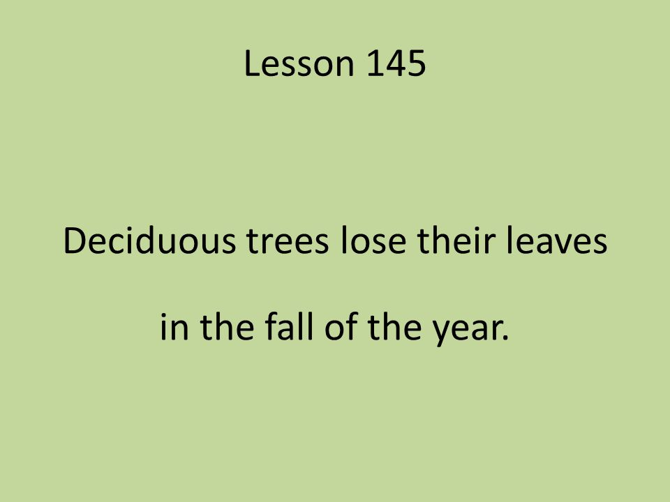 Lesson 145 Deciduous trees lose their leaves in the fall of the year.