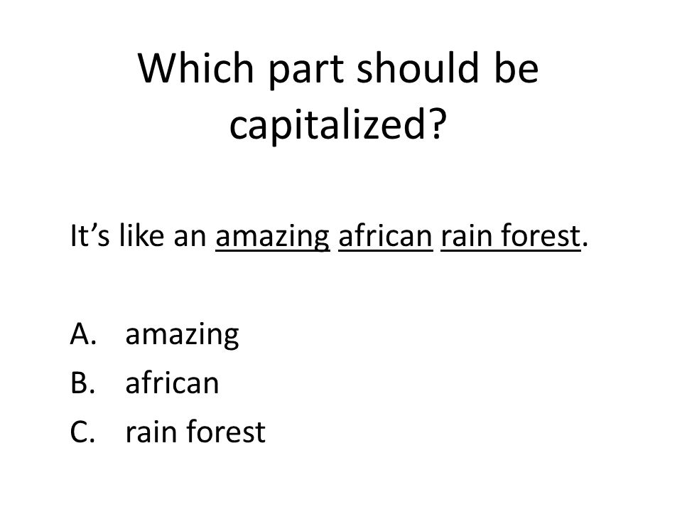 Which part should be capitalized.It's like an amazing african rain forest.