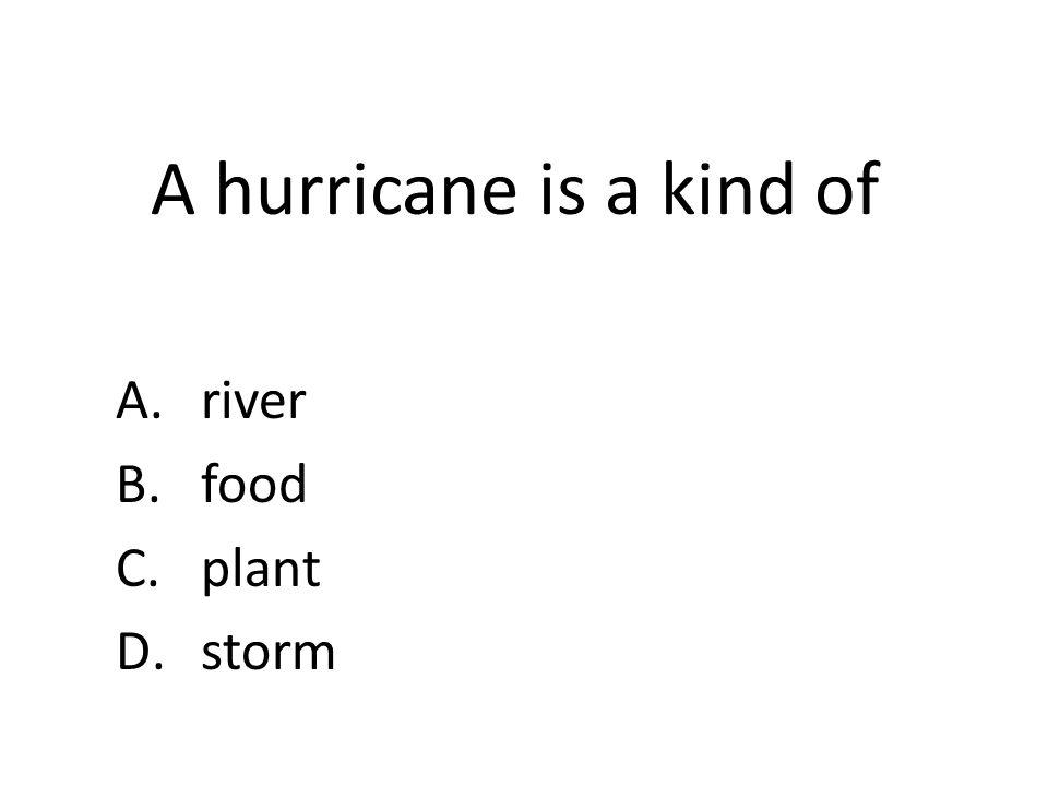 A hurricane is a kind of A.river B.food C.plant D.storm