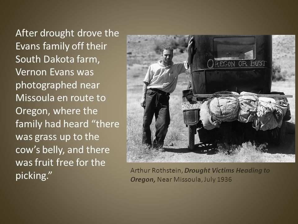 After drought drove the Evans family off their South Dakota farm, Vernon Evans was photographed near Missoula en route to Oregon, where the family had heard there was grass up to the cow's belly, and there was fruit free for the picking. Arthur Rothstein, Drought Victims Heading to Oregon, Near Missoula, July 1936