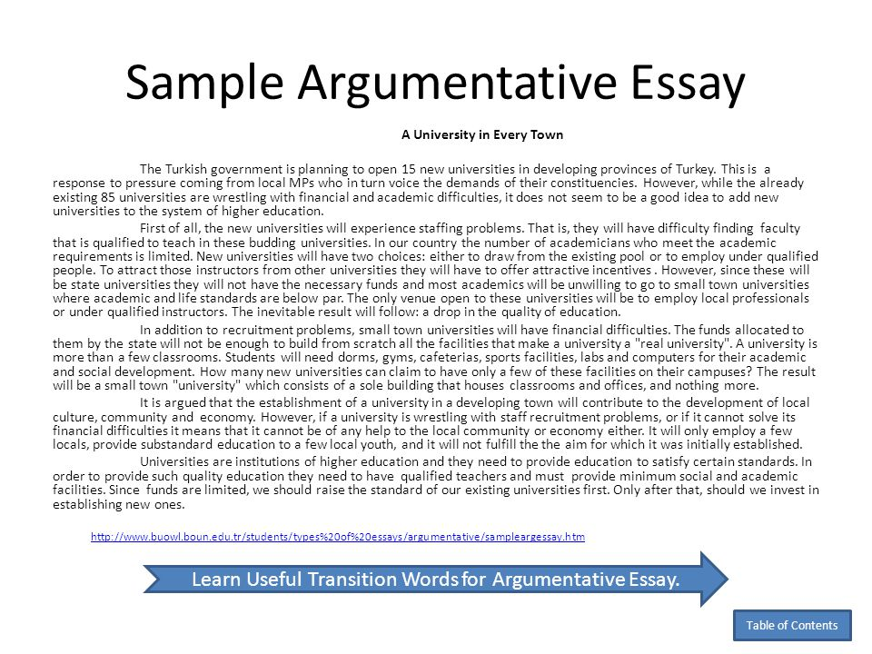 Good Argumentative Essay Sample