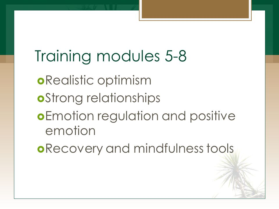 Training modules 5-8  Realistic optimism  Strong relationships  Emotion regulation and positive emotion  Recovery and mindfulness tools
