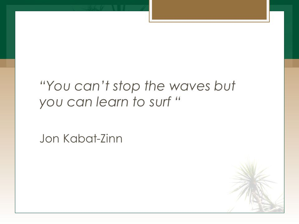You can't stop the waves but you can learn to surf Jon Kabat-Zinn